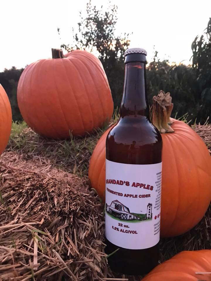 Apples-Pumpkins-Corn Maze